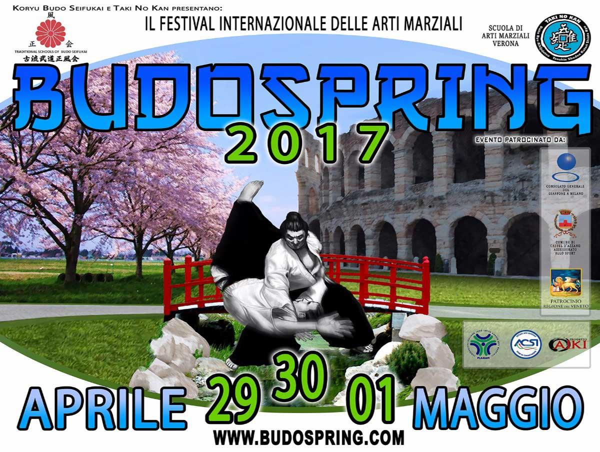 festival-internazionale-delle-arti-marziali-2017