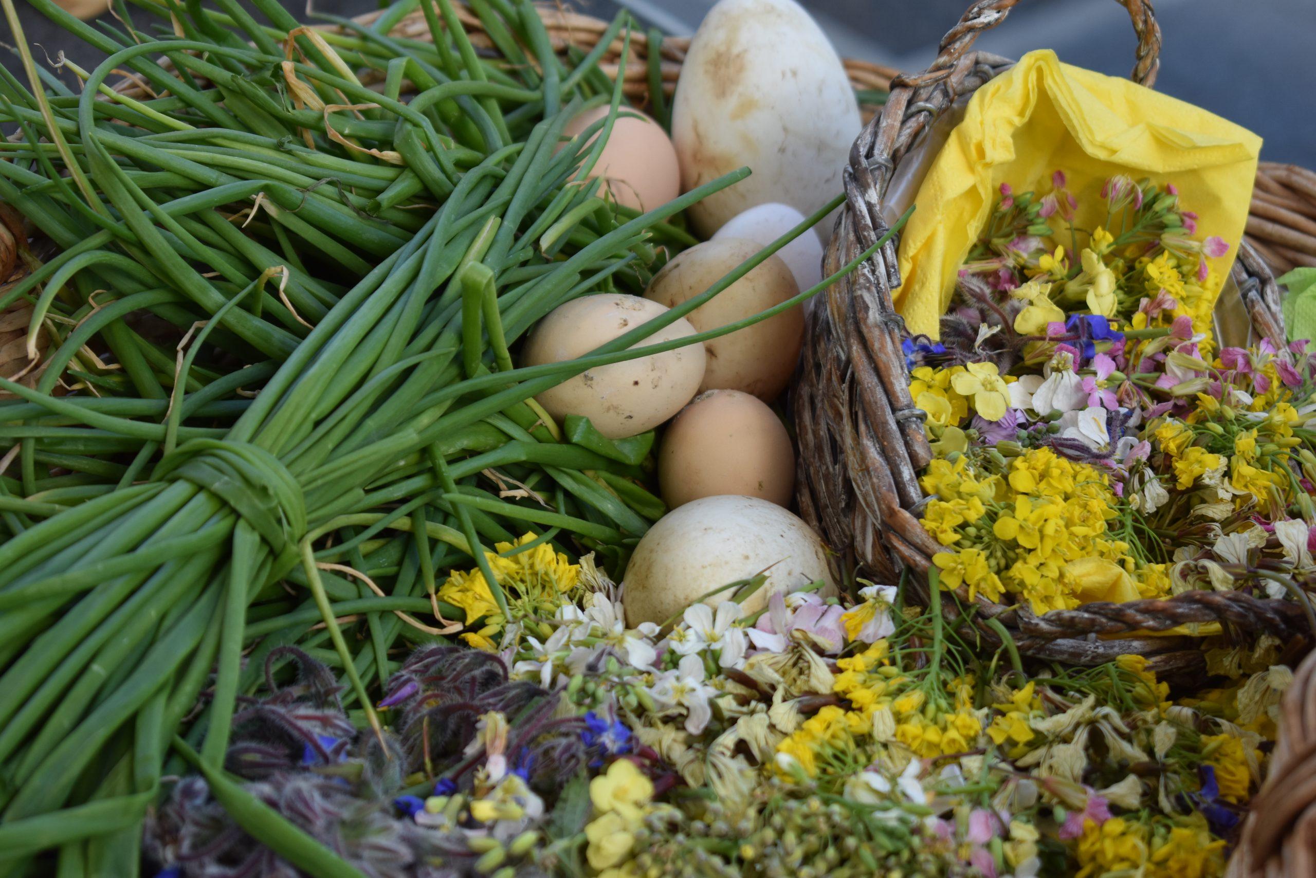 ingredienti erbe e fiori