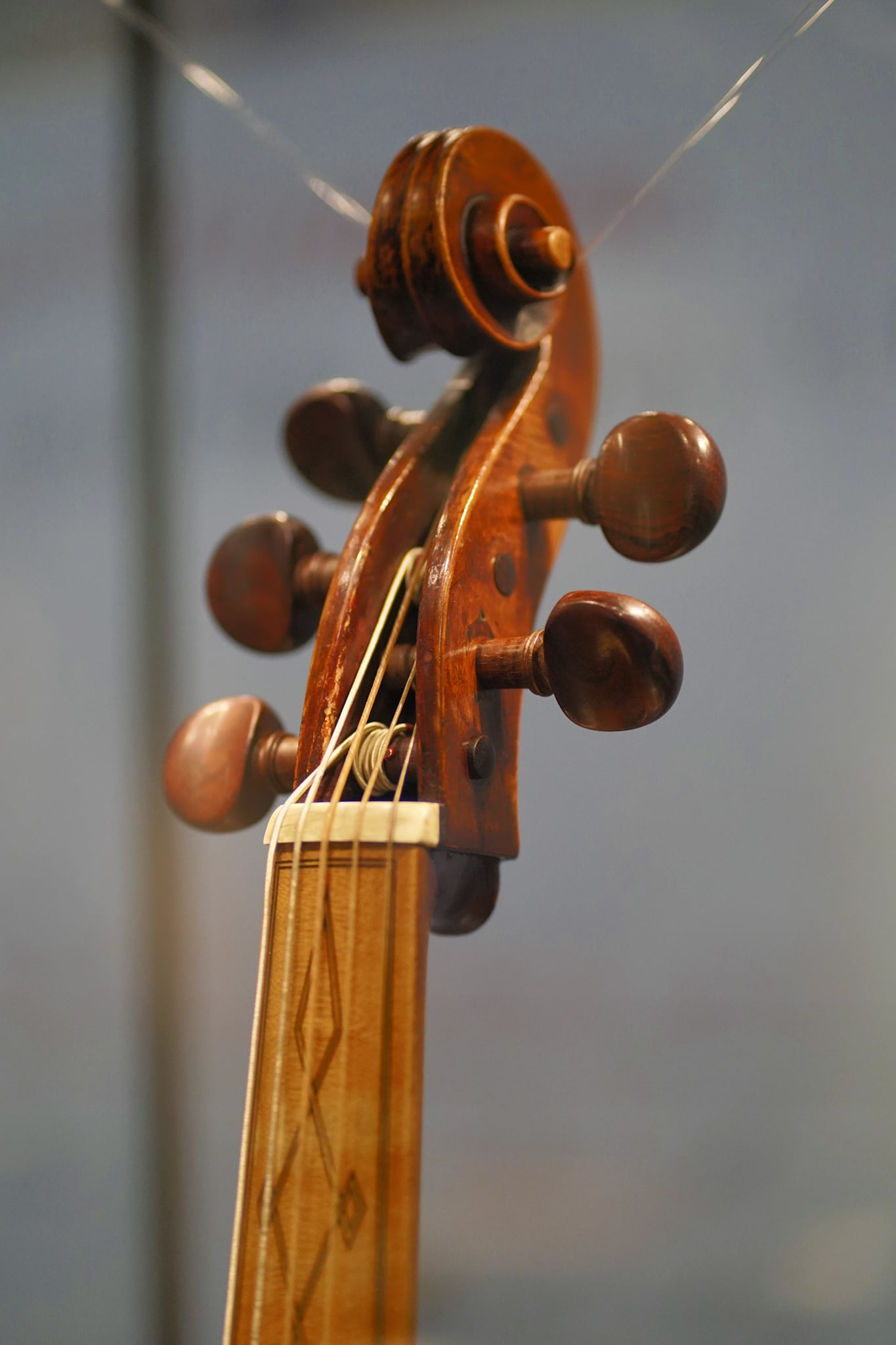 Particolare Stradivari Museo